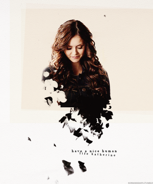 i'm katherine pierce. i'm a survivor.