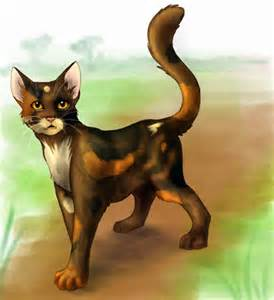 Make Your Own Warrior Cat! hình nền titled leopardclaw
