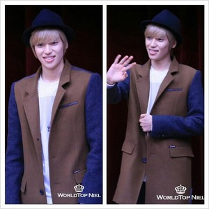 niel ♥♥ teen top