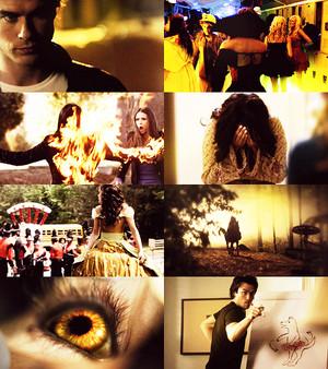 the originals, 1x03, hayley marshall, werewolf