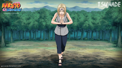 Naruto Shippuuden fond d'écran probably with long trousers called *Tsunade*