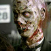 ★ Zombies ☆  - zombies icon
