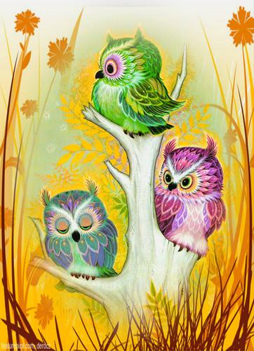 Owls fond d'écran titled 3 birds on a stump