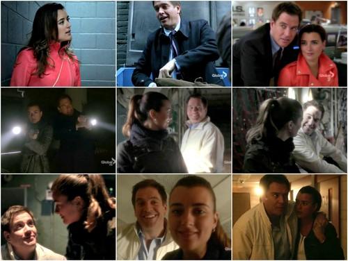 "Tiva fondo de pantalla with a business suit titled A Tony and Ziva look back into Season 10: S10E14 - ""Canary"""