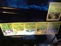 All Pokémon types that I have in cards - pokemon photo
