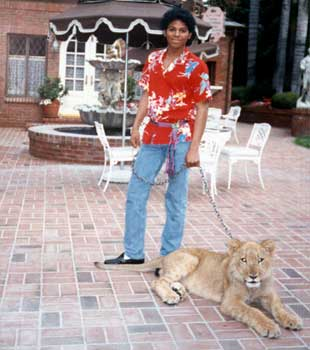 "1992 Mini-Series, ""The Jacksons: An American Dream"""