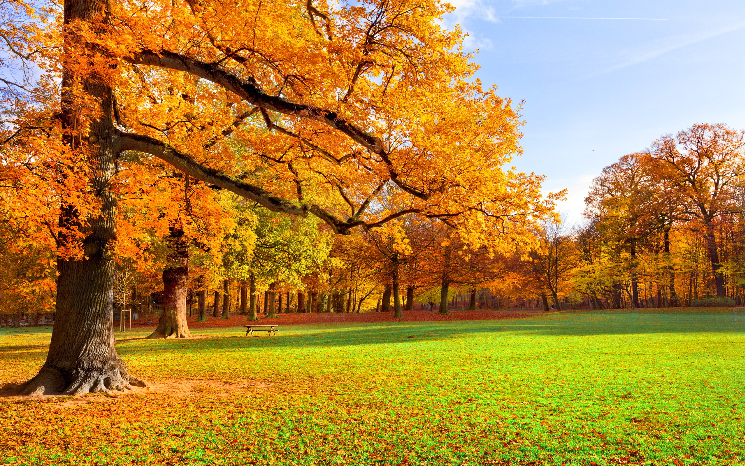 random images autumn scenery hd wallpaper and background photos