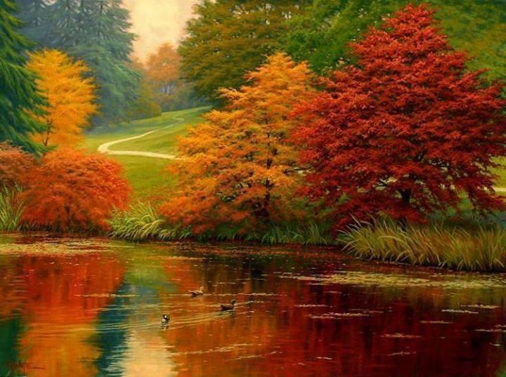 Autumn Nature Photo 35986574 Fanpop