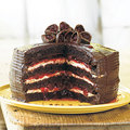 Black Forest Cake - dessert photo
