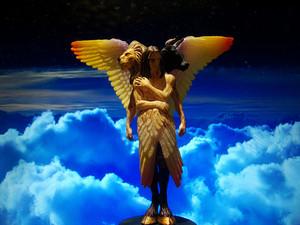 Cherubim Angel