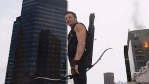 Clint Barton / Hawkeye Scene