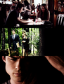 Damon & Elena  - the-vampire-diaries-tv-show photo