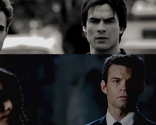 Elijah & Hayley wallpaper containing a business suit called Delena | Haylijah