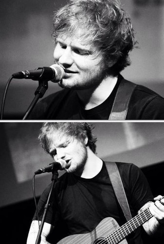 Ed Sheeran wallpaper containing a guitarist and a concert titled ED ♥