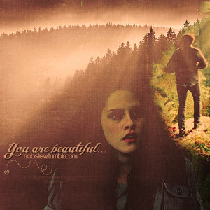 Edward&Bella fan art