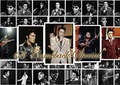 Elvis Wallpaper - elvis-presley fan art