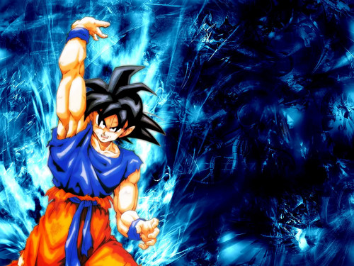 Dragon Ball Z wallpaper possibly containing Anime entitled Goku wallpaper 2