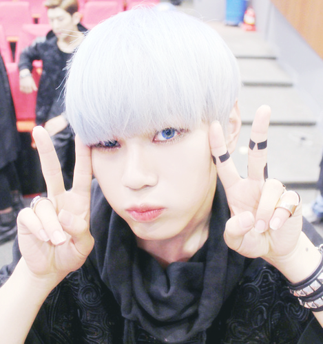 http://images6.fanpop.com/image/photos/35900000/Hansol-topp-dogg-35918924-469-500.png