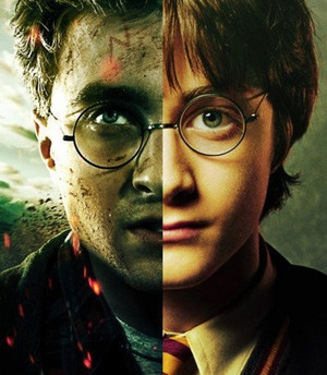Harry Potter Years 1 & 7