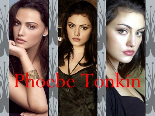 The Originals پیپر وال with a portrait entitled Hayley Phoebe Tonkin