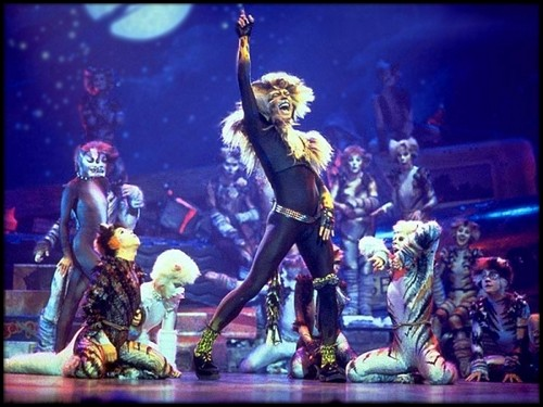 John Partridge wallpaper with a concert entitled John as Rum Tum Tugger in Cats (1998)