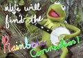 Kermit Rainbow - kermit-the-frog fan art