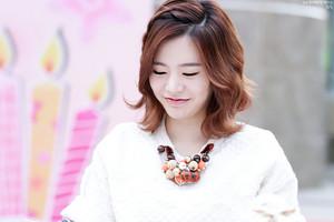 Lotte Fansign-Sunny