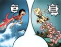 Luffy vs নারুত