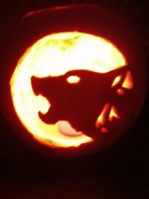 My かぼちゃ, カボチャ