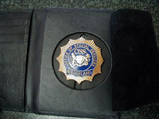 Neverland Security Badge