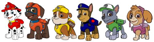PAW Patrol karatasi la kupamba ukuta called Paw Patrol - Pups