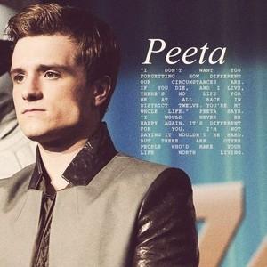 Peeta ✦