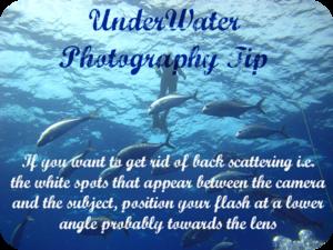 Fotografia Tips