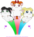 Powerpuff Ham   - hamtaro photo