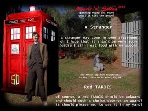 Red TARDIS