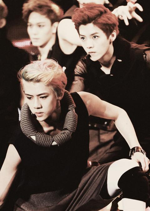 Luhan and sehun wolf