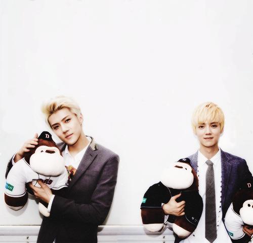 Sehun and Luhan - exo PhotoExo Sehun And Luhan Growl