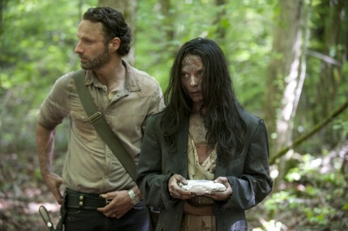 Andrew lincoln achtergrond titled The Walking Dead - 4x1