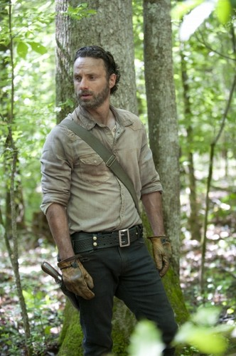 Andrew lincoln achtergrond with a sitka spruce, an american white birch, and a mahogany entitled The Walking Dead - 4x1