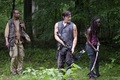 Walking Dead 4x03 - Isolation - the-walking-dead photo