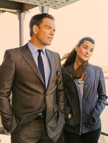 Tiva fondo de pantalla containing a business suit, a suit, and a well dressed person titled Tony and Ziva