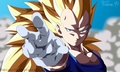 Vegeta SSJ3 - dragon-ball-z fan art
