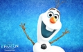 Walt Disney Wallpapers - Olaf - walt-disney-characters wallpaper