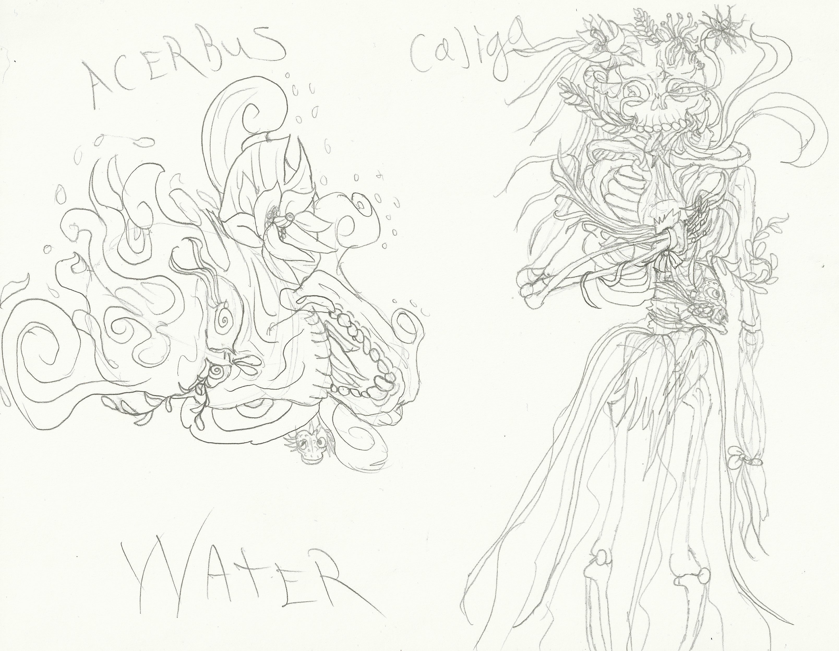 Water Acerbus & Caliga