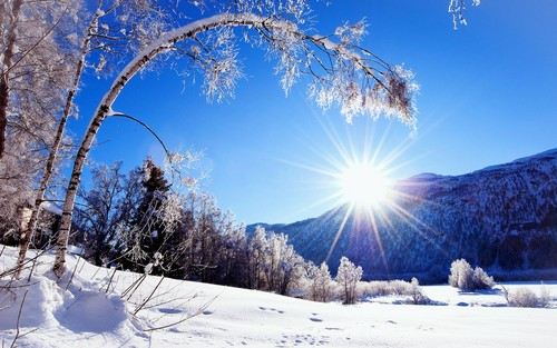 Winter wallpaper with a ski slope, a ski resort, and a snowbank entitled Winter Wonderland