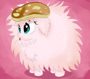 pancake fluffle puff