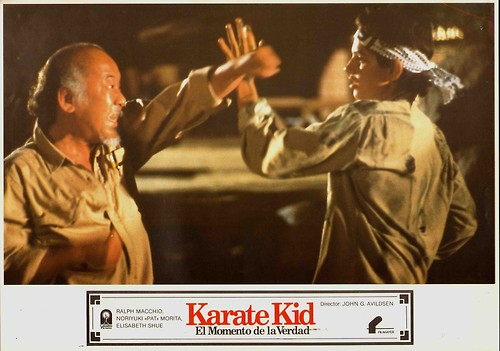 The Karate Kid wallpaper titled the karate kid