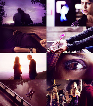 tvd + colors