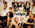 twilight saga cast - twilight-series wallpaper