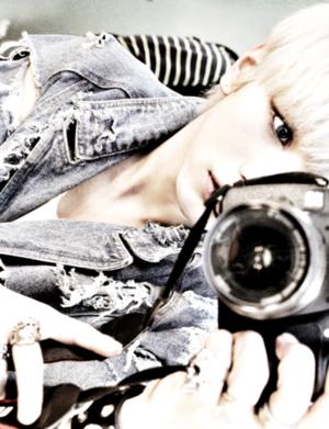 탑독♥*♥*♥